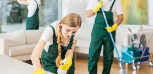 Cleaning service with professional equipment during work