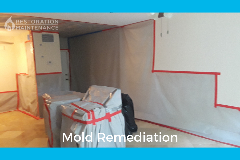 RestoMain Mold Remediation