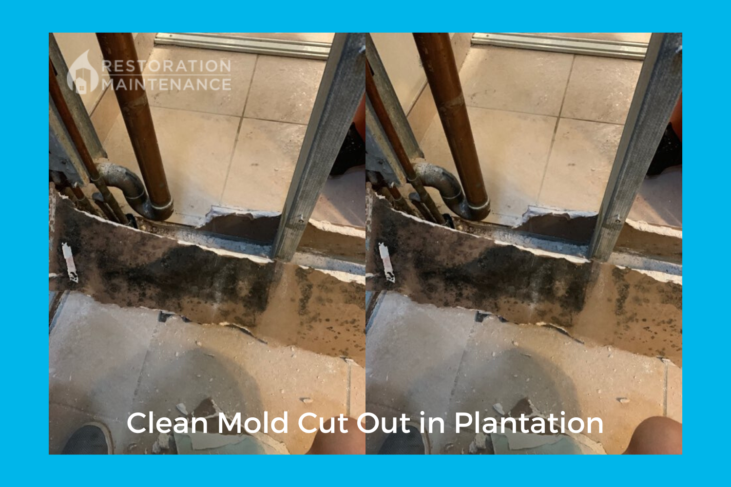 Restoration Maintenance mold cut out in unit in Plantation