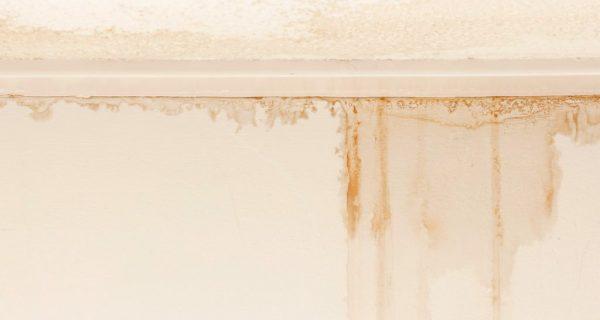 Wet Drywall RestoMain Photo